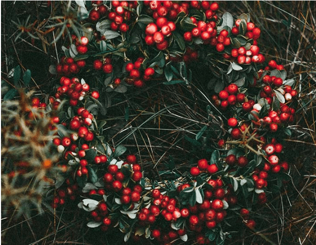 Ways with which you can plan plastic free Christmas